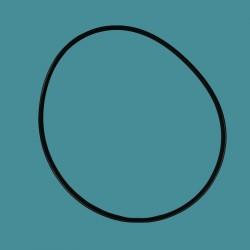 Courroie de transmission Zodiac (tous modèles)
